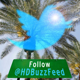 Follow @HDBuzzFeed on Twitter for live updates from the Conference