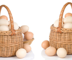 Your eggs: don't put them all in one basket. Many different approaches to treating HD are being researched, so if any one fails there are lots of other options.