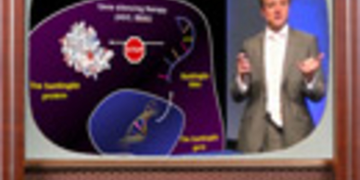 Video: What's new in Huntington's disease research 2012