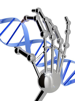 Zinc fingers can be designed to stick to any DNA sequence we want. They don't really look like a robotic hand, though.