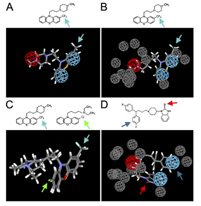 Molecular modeling experiments can help find out which parts of a drug are most important