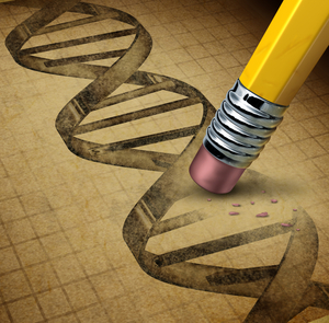 Gene editing techniques result in a permanent change to the DNA code