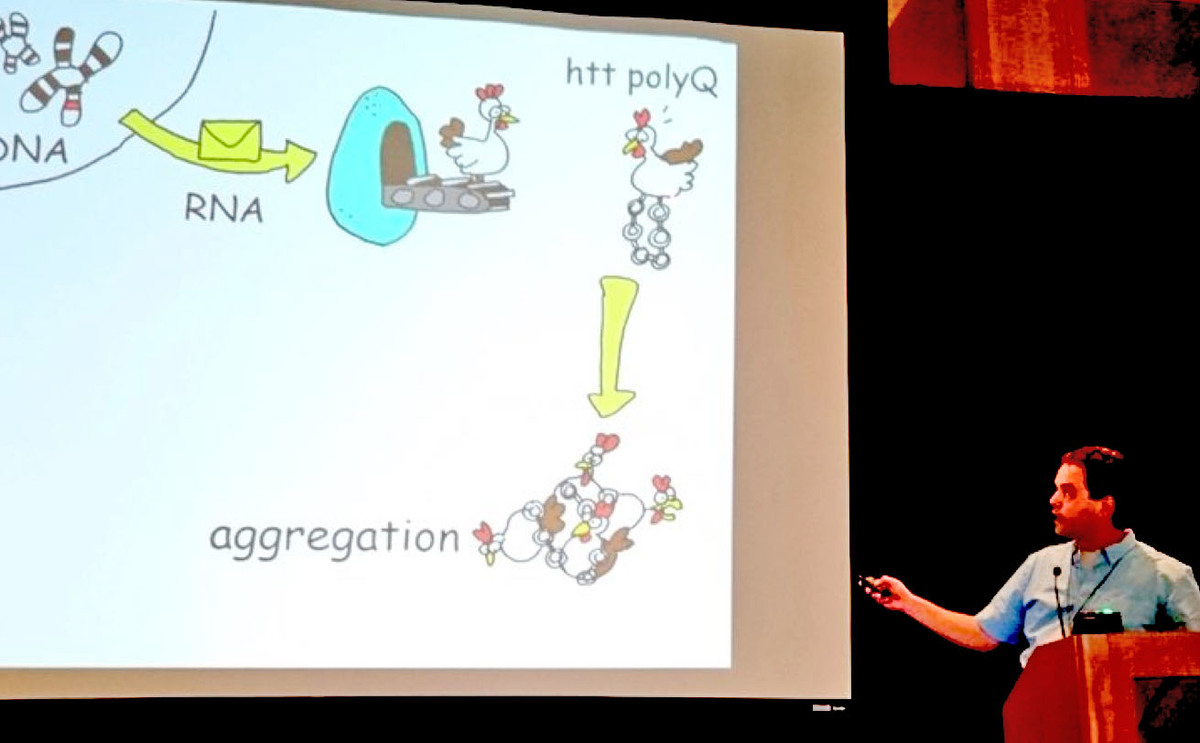 Eric Reitz used home-drawn chicken cartoons to explain his work on cellular garbage clearance in HD