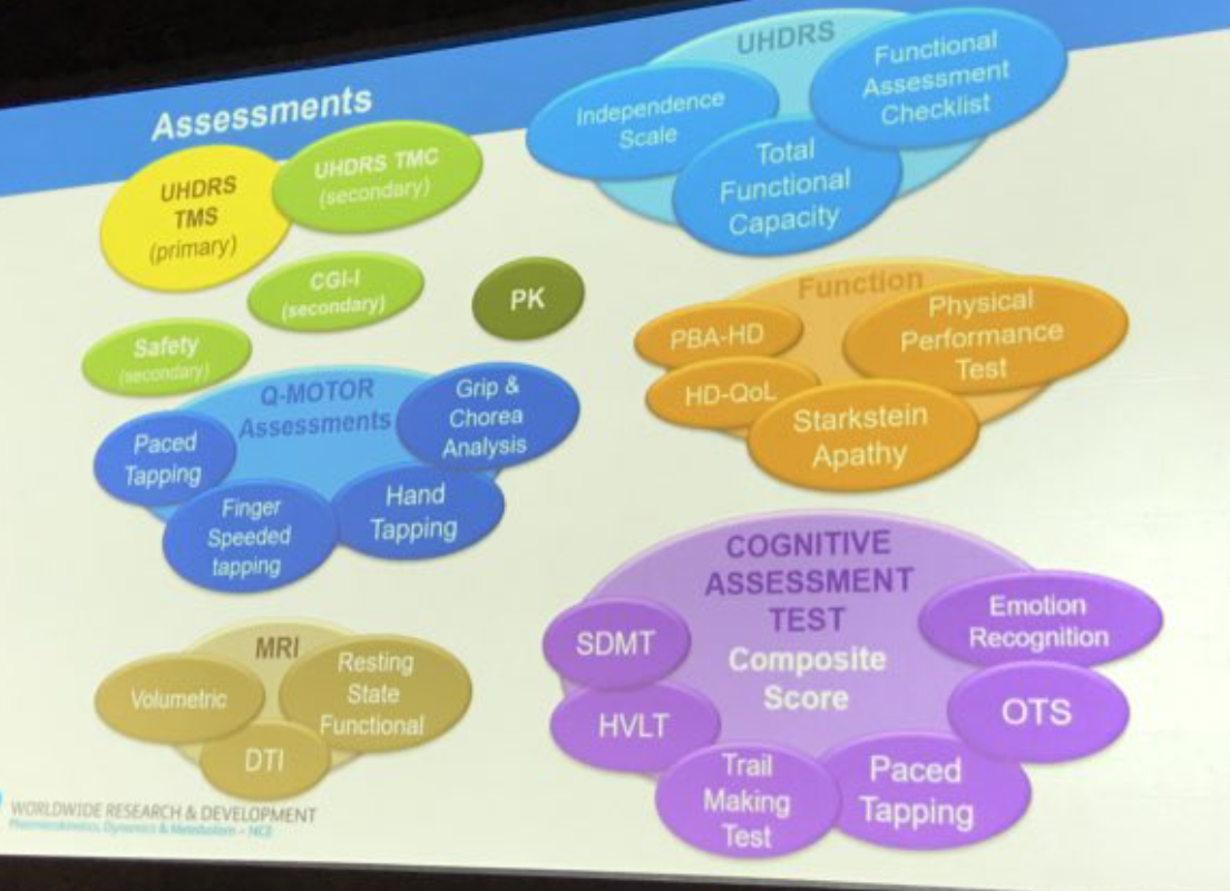 Slide showing all the assessments patients underwent in the Amaryllis study