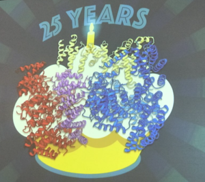 The structure of the huntingtin protein, presented by Dr Kochanek as a birthday cake for the 25th anniversary of the HD gene discovery