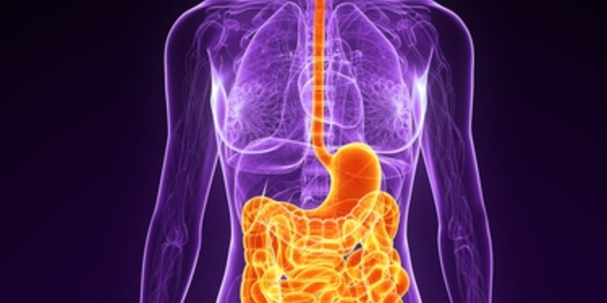 Not all in your head: digestive problems in HD